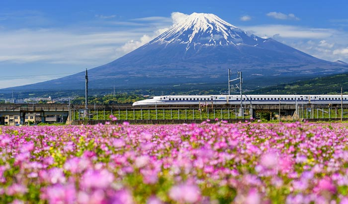 Options for Travel from Nagoya to Tokyo